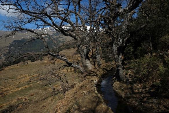 Alpujarras Spain